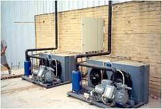 Freezer Room Compressors