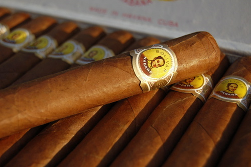 bolivar-royal-corona